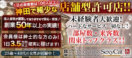セクシーキャット神田店 - 神田・秋葉原エリアのファッションヘルス求人情報