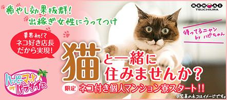 土浦ハッピーマットパラダイス - 土浦・つくばのファッションヘルス求人情報