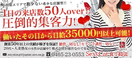 セクシーキャット宮小路店 - 小田原エリアのファッションヘルス求人情報