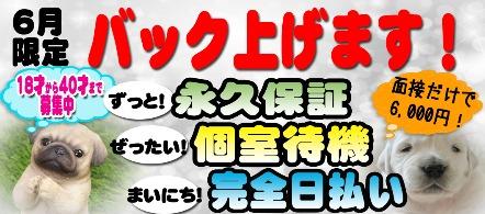 ダック京都 - 河原町・木屋町の人妻・熟女ヘルス求人情報