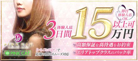 PINK CAT(ピンクキャット) - 仙台のデリヘル求人情報