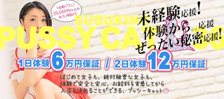 プッシーキャット - 札幌・すすきののファッションヘルス求人情報