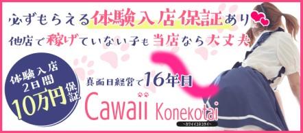 Cawaii Konekotai -かわいい子猫隊- - 高崎・前橋のデリヘル求人情報