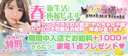 やんちゃな子猫日本橋店 - 日本橋エリアのホテルヘルス求人情報