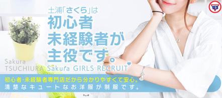 サクラ土浦店 - 土浦・つくばのファッションヘルス求人情報